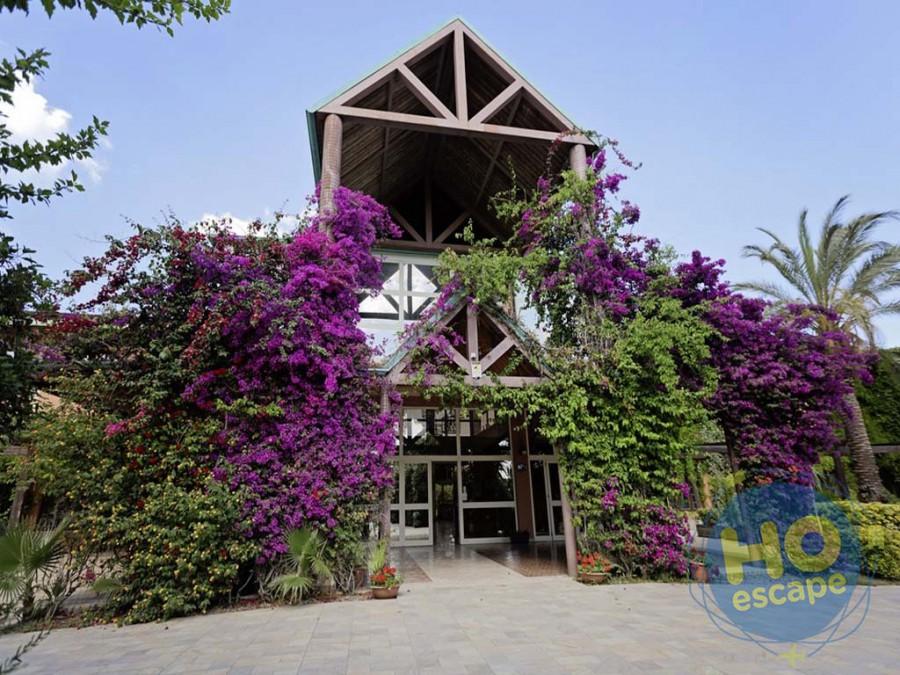 Minerva Club & Resort