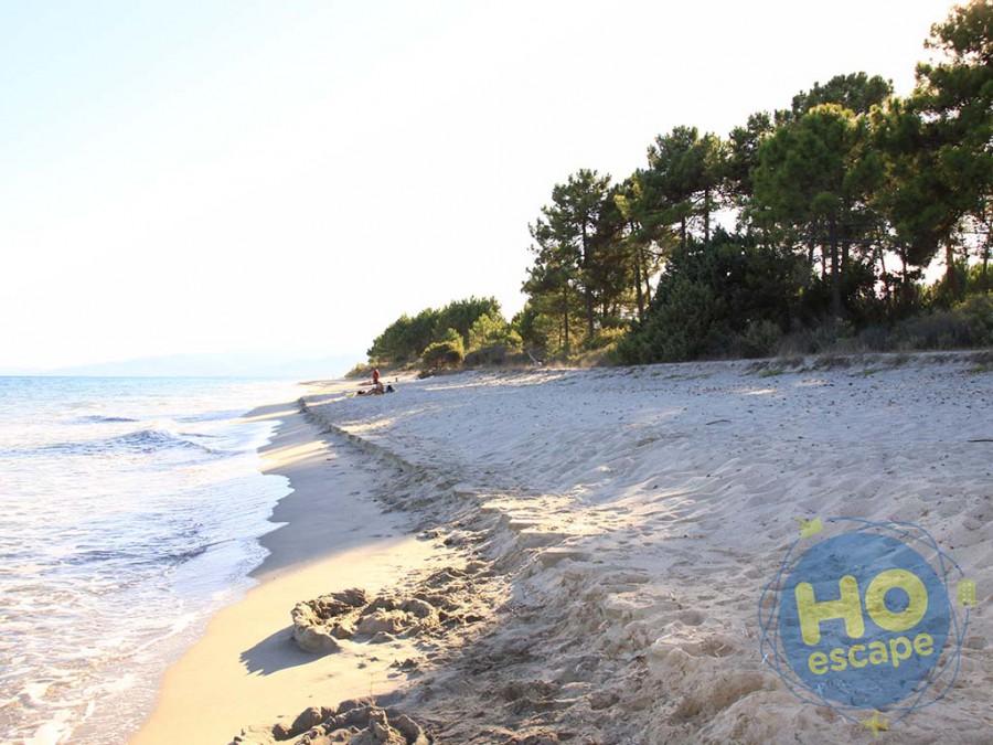 Marina Corsa Complesso Residenziale La Spiaggia della Ghisonaccia, libera a 150 mt. dal Complesso