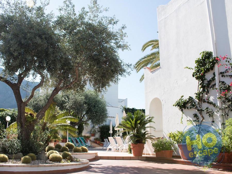 Hotel Terme Royal Palm Giardino della Struttura